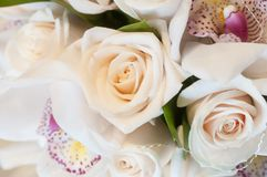 The purity of a girlfriend. Bridal bouquet with white roses and orchids Stock Images