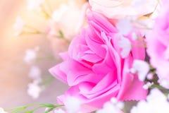 Purity loving background Royalty Free Stock Photo
