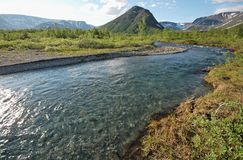 Purity of river water. Russian north Stock Photos