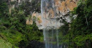 Purling Brook Falls in Springbrook National Park, Australia. Purling Brook Falls in Springbrook National Park, Queensland, Australia stock footage
