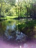 Purling strumień Zdjęcie Royalty Free