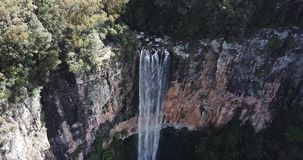 Purlingbrook Falls in Springbrook National Park. Purling brook Falls at Springbrook National Park in Queensland stock video footage
