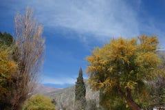 purmamarca - het Noorden van Argentinië/noa, jujuy salta, royalty-vrije stock foto