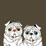 Puro-sangue da ilustração da raça do cão do Pug ilustração stock