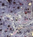 Purpe紫罗兰色大理石被构造的纸设计 图库摄影