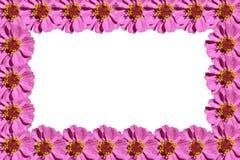 Purper bloemenframe Stock Fotografie