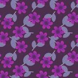 Purper bloemenpatroon Stock Afbeelding