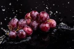 Purper donker close-up van druiven met een bezinning over witte en zwarte achtergrond in een nevel van water royalty-vrije stock afbeeldingen