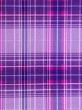 Purper geruite Schotse wollen stof. Royalty-vrije Stock Afbeeldingen