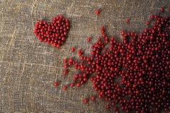 Purper hart van verzamelde rode aalbesbessen Stock Foto's