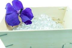 Purper orchideebloem en kristal in houten die doos op whit wordt geïsoleerd stock fotografie