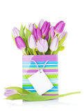 Purper tulpenboeket in giftzak Stock Fotografie