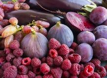Purper voedsel Achtergrond van bessen, vruchten en groenten Verse fig., pruimen, frambozen, biet, aubergine en druiven Stock Afbeeldingen