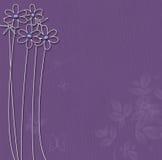 Purpere achtergrond met witte bloemen Royalty-vrije Stock Afbeelding