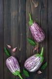 Purpere aubergine, knoflook en basilicumbladeren van hierboven op de oude houten raad met vrije tekstruimte Verse oogst van de tu Royalty-vrije Stock Foto