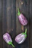 Purpere aubergine van hierboven op de oude houten raad met vrije tekstruimte Verse oogst van de tuin T Royalty-vrije Stock Afbeeldingen