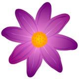 Purpere bloem op een witte achtergrond vector illustratie