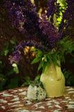 Purpere bloemen Stock Afbeeldingen