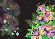 Purpere bloemen met bladeren op zwarte achtergrond Royalty-vrije Stock Fotografie