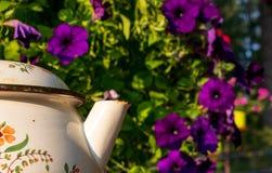 Purpere bloemen met het spuiten van een theepot in de voorgrond stock fotografie