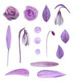 Purpere bloemenvector royalty-vrije illustratie