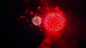 Purpere brandflitsen van feestelijk vuurwerk in de nachthemel stock footage