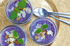 Purpere chiapudding van de natuurlijke voedingbosbes Royalty-vrije Stock Foto