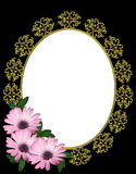 Purpere Daisy Flowers Background of Frame Royalty-vrije Stock Foto's