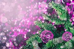 Purpere de pijnboom fonkelende achtergrond van de Kerstmissnuisterij Royalty-vrije Stock Fotografie