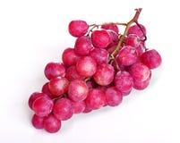 Purpere druiven stock foto