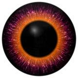 Purpere en oranje oogtextuur met zwarte rand royalty-vrije illustratie