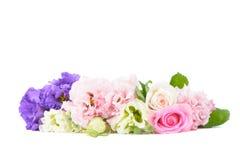 Purpere en roze anjers en rozen Stock Fotografie