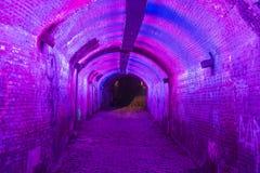Purpere en roze verlichte Ganzemarkt-tunnel in Utrecht, Nederland Stock Afbeelding