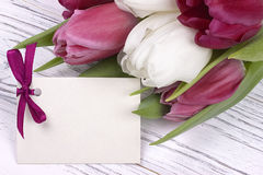 Purpere en witte tulpen met Witboek op een witte houten achtergrond met kaart voor tekst De dag van de vrouw 8 Maart De dag van d Royalty-vrije Stock Afbeelding