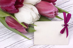 Purpere en witte tulpen met Witboek op een witte houten achtergrond met kaart voor tekst De dag van de vrouw 8 Maart De dag van d Stock Fotografie
