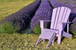 Purpere gazonstoel op lavendelgebied royalty-vrije stock afbeeldingen