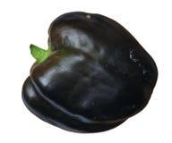 Purpere groene paprika stock foto