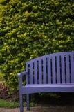 Purpere houten stoel in de tuin Royalty-vrije Stock Fotografie