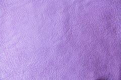 Purpere huidtextuur royalty-vrije stock foto's