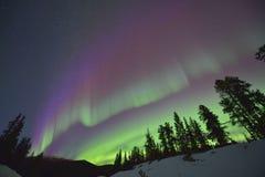 Purpere noordelijke lichten royalty-vrije stock foto