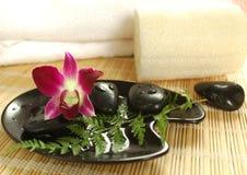 Purpere orchidee in het kuuroord Stock Afbeeldingen