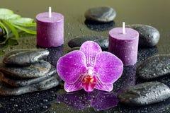 Purpere orchideekaarsen en zen stones spa concept Stock Foto's