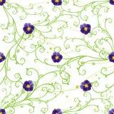 Purpere pansies en groene wervelingen Royalty-vrije Stock Afbeeldingen
