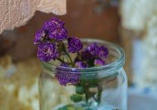 Purpere slappe bloem in een glaskruik royalty-vrije stock afbeelding