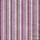 Purpere strepen Stock Fotografie