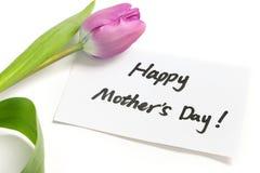 Purpere tulp voor moeder stock foto