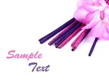 Purpere wierook en roze cactusbloem Stock Afbeeldingen
