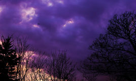 Purple Afternoon. East London United Kingdom  Afternoon  Flaying Plane Royalty Free Stock Images