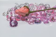 The Purple Amethys gemstones shine light pendant. In front of pink rose flower Stock Images