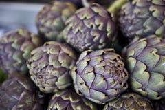 Purple Artichoke Stock Images